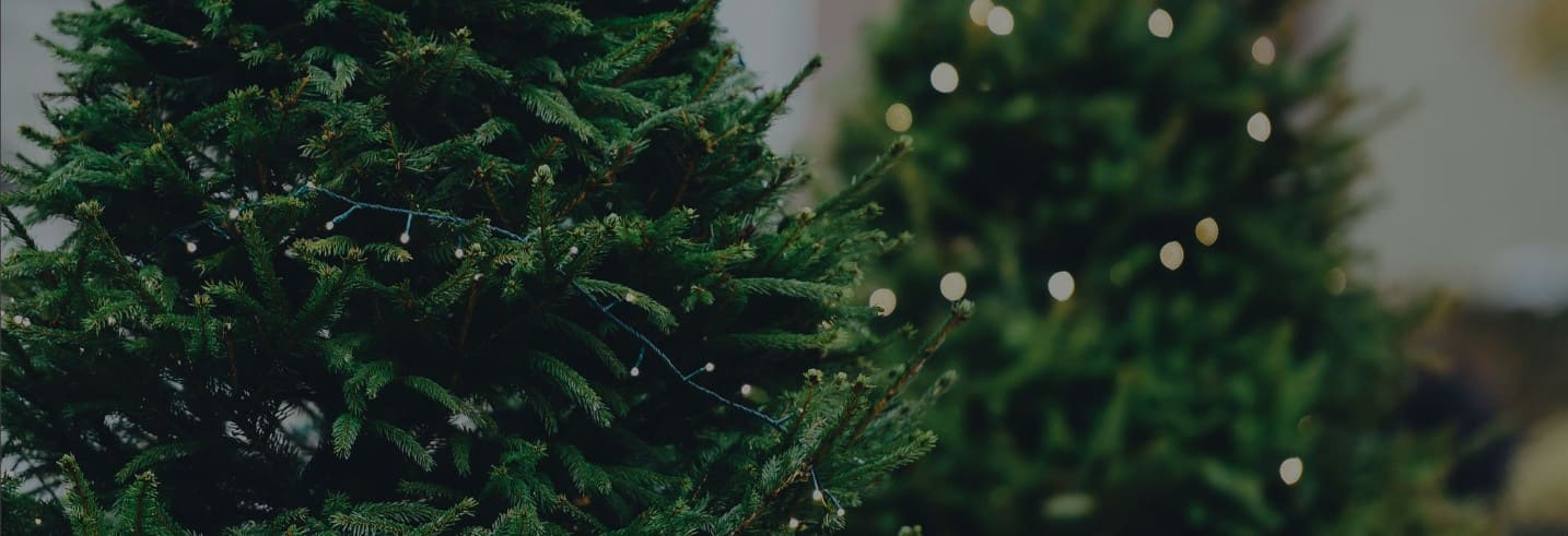Is Your Content Marketing Ready for the Holidays?